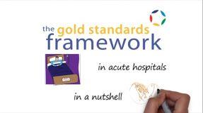 GSF Hospital Programme nutshell